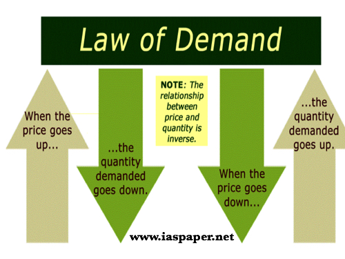 review of law and economics
