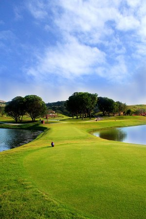 the pearl golf course reviews