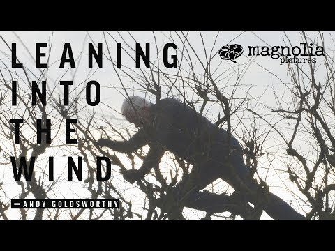 leaning into the wind review