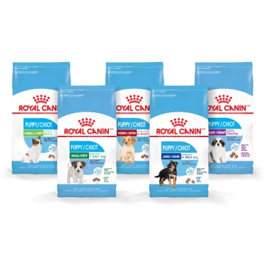 royal canin development puppy review