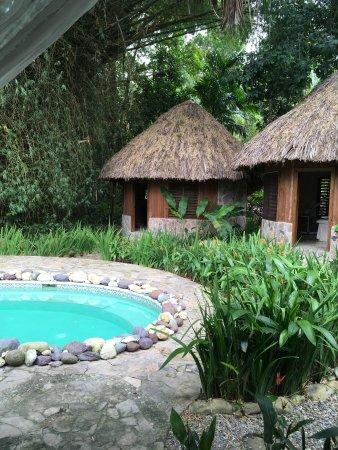 the lodge at pico bonito reviews