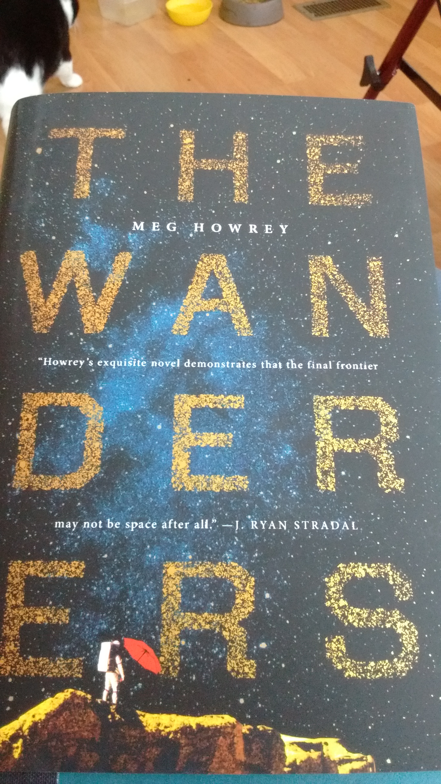 the wanderers meg howrey review